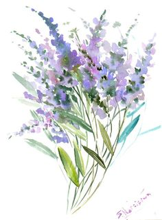 Lavender original watercolor painting 12 X 9 in by ORIGINALONLY, $28.00
