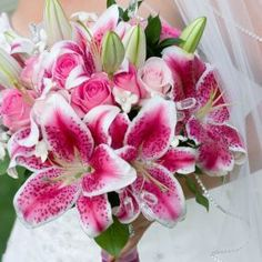 Star Gazer Lillies - my favorite flower in all the world - Got it, @KD Eustaquio Jagoda??? This is what I want at my wedding + peonies. Okay??! ;-)
