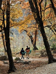 Find the flavors, sights and sounds of autumn all around Austin | www.mystatesman.com