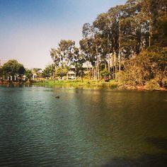 #Lagoa #Americana #Zoologico