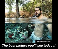 The selfies ofthe year from all over the world photography Selfies, World Photography, Creative Photography, Photography Ideas, Travel Photography, Tumblr Funny, Funny Memes, 9gag Funny, Memes Humor
