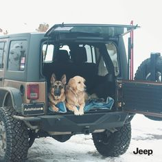 Najlepsi przyjaciele człowieka.  #Jeep #JeepWrangler Jeep Photos, Van Home, Wrangler Unlimited, Jeep Wrangler, Jeeps, Photography Ideas, Trains, Boats, Aircraft