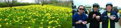 Tacoma Wheelmen's Bicycle Club - Daffodil Classic   2013 April 14