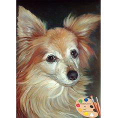 175 best papillion dog images on pinterest papillion dog little papillion dog portrait 86 solutioingenieria Images