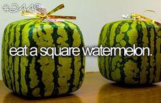 its a square watermelon!
