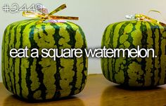 eat a square watermelon