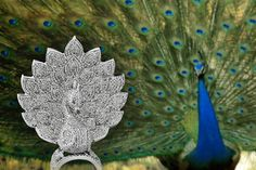 Precise details, beautiful curves and meticulously cut diamonds embellish this dazzling creation, which is a gorgeous replica of the most beautiful bird- peacock. A masterpiece in itself! Most Beautiful Birds, Beautiful Curves, Peacock Ring, Hummingbird, Diamond Cuts, Embellishments, Detail, Diamonds, Animals