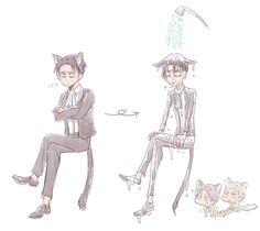 Levi cat Part 1