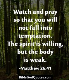 Watch and pray so that you will not fall into temptation. The spirit is willing, but the body is weak. - Matthew 26:41 http://biblegodquotes.com/watch-and-pray-so-that-you-will-not-fall-into-temptation/