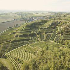 Lösshof - Natur und Genuss am Wagram Vineyard, Outdoor, Nature, Outdoors, Outdoor Games
