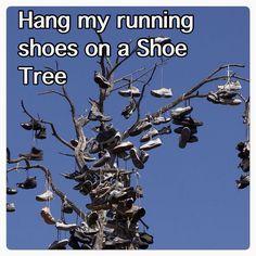 Shoe tree Bucket list