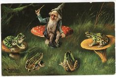 gnome and frogs Xmas Elf, Christmas Gnome, Forest Creatures, Forest Animals, Gnome Pictures, David The Gnome, Kobold, Frog Art, Mushroom Art