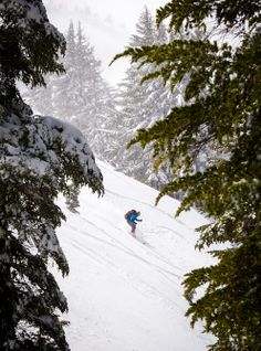 Skiing in My Own Backyard - Bend, Oregon.  This is a great read from the New York Times about many of the great skiing opportunities available #inBend.  If you think it is just about #skiing Mt. Bachelor, it isn't.
