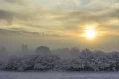Matin blanc sur les Monts d'Arrée by Aurélie Prouff on 500px Snow, Outdoor, Rain, Photographs, Mountain, Daughters, White People, Outdoors, Outdoor Games