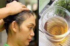 How to Use Guava Leaves to Stop Hair Loss