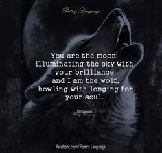 You are the moon, illuminating the sky with your brilliance and I am the wolf, howling with the longing for your soul. ♡U Lone wolf Wolf Spirit, My Spirit Animal, You Are My Moon, Relationship Quotes, Life Quotes, Relationships, Wisdom Quotes, Moon Quotes, Motivational Quotes