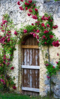 The door, Soria, Castile and León, Spain. Cool Doors, The Doors, Unique Doors, Windows And Doors, Garden Doors, Garden Gates, Door Gate, Closed Doors, Door Knockers