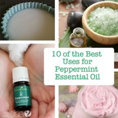 10 of the Best Uses for Peppermint Essential Oil