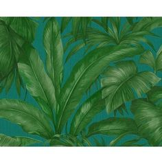Versace Home Palm Leaves Wallpaper (515 RON) ❤ liked on Polyvore featuring home, home decor, wallpaper, backgrounds, borders, effect, green, picture frame, palm leaves wallpaper and green wallpaper