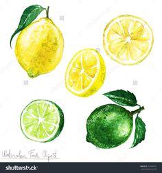 水彩食品剪纸艺术——柠檬和酸橙-食品及饮料,物体-海洛创意(HelloRF)-Shutterstock中国独家合作伙伴-正版素材在线交易平台-站酷旗下品牌