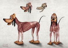Pluto's anatomy