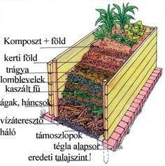 Most készítsünk magaságyat! Stone Garden Paths, Garden Stones, Raised Vegetable Gardens, Raised Garden Beds, Back Gardens, Outdoor Gardens, Back Garden Landscaping, Garden Park, Dream Garden