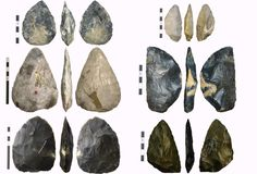 Neanderthal Tools | Left: Mousterian of Acheulean Tradition hand axes, from top to bottom ...