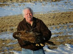 This is Bob Anderson he runs Decorah where the Eagles are. This was an Eaglet that hatched last year and was found electrocuted last Thurs 3/5 from a power line. The pole wasn't covered the eaglet had a transmitter on itwhich is what you might see on its back. RIP D-4.