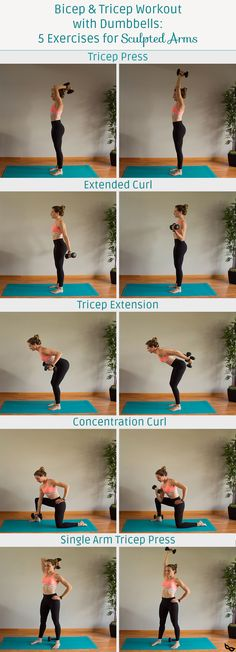 Easy arm workout for women with weights. Bicep and tricep workout with weights! This upper body workout will help you build muscle for toned arms. Great upper body workout with weights to help build strength and definition. Tricep Workout With Dumbbells, Workout Hiit, Bicep And Tricep Workout, Tone Arms Workout, Biceps And Triceps, Dumbbell Workout, Workout Challenge, Workout Videos, Cycling Workout