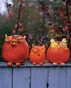 Pumpkin Owls | Martha Stewart Living - The owls' extra-large eyes are made from halved miniature pumpkins and gourds. Their feet and ears are curved pieces of pumpkin.