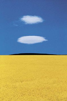 Photo by Franco Fontana, Puglia, Italy Minimal Photography, Color Photography, Landscape Photography, Photography Blogs, Iphone Photography, Urban Photography, Mellow Yellow, Blue Yellow, Bright Yellow