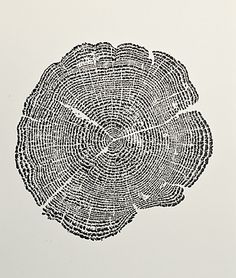 Tree of Life print - I just love this.