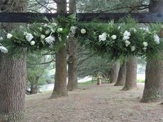 Forest decor - an entrance arch Spotted Owl, Forest Decor, Real Weddings, Entrance, Arch, Wedding Decorations, Bride, Flowers, Plants