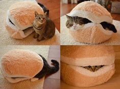 Cat Burger Bed http://ibeebz.com