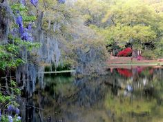 One of the most stunning photos ever featured on the blog Eille la cheap!, the beautiful Middleton Place gardens in Charleston, South Carolina. It looks like a Monet painting!