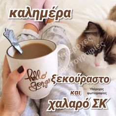 Good Morning, Greek, Humor, Funny, Happy, Good Day, Humour, Bonjour, Bom Dia