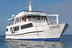 The best deals in Galapagos are last-minute offers booked between 2 and 30 days prior to departure. Check out all Positiv Turismo last-minute specials.