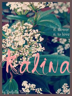 Baby Girl Name: Kalina. Meaning: Flower (Slavic; Ukrainian; Czech) To Love (Aboriginal) Girl (Hawaiian) http://www.pinterest.com/vintagedaydream/baby-names/
