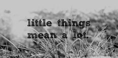 Little Thing Quotes