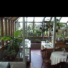greenhouse kitchen - Google Search   natural homes   Pinterest   Greenhouse  kitchen and Kitchens