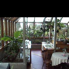 Superior Greenhouse Kitchen