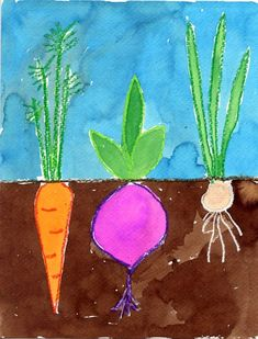 Here's a vegetable painting idea I found over at Artsonia.com. It's great way to make a pretty painting and learn about root systems as well. If you can afford it, real watercolor paper will make all the paint texture look it's best.