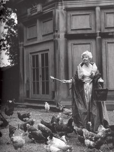 The Dowager #Duchess of #Devonshire, known to feed her chickens while wearing a ball gown.