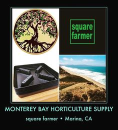 It's always a great day to grow. Why not grow as smart as you can? MONTEREY BAY HORTICULTURE SUPPLY now sells the square elevator saucer by square farmer. Elevate your pot with the built-in elevator. Avoid root rot; let your roots breathe; regulate feeding; and, promote proper drainage. Perfect for all five gallon pots. But it can fit a few other sizes too.  Made in Corona, CA. $4.20. Get yours now • 218 REINDOLLAR AV., MARINA, CA • #squarefarmer #madeincorona #madeinamerica #plantriser…