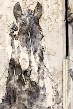 "Ranger Horse. Extra Large Horse Canvas Art Print up to 60"". Horse wall decor. Wood Plank, Rustic Canvas Wall art, Large Horse"