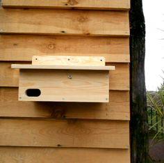 Caja nido para vencejos