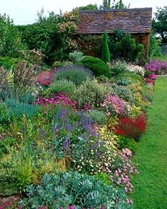english garden Would love to have as many beauties in my yard! flowers for the herbaceous border. Dream Garden, Garden Art, Garden Cottage, Garden Beds, Herbaceous Border, Plant Pictures, Garden Borders, Garden Images, Garden Projects