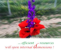 ... efficient #resources will open internal #dimensions !