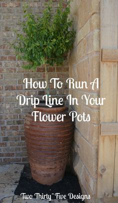 How To Run A Drip Line In Your Flower Pots