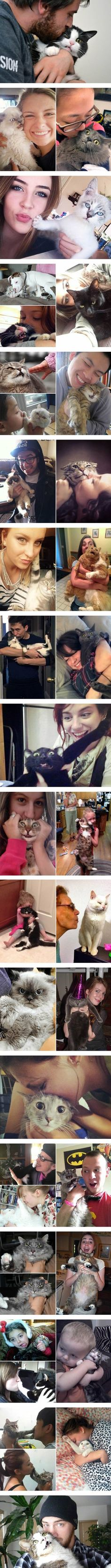 Cats that don't like cuddling